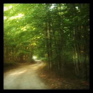 wright-road
