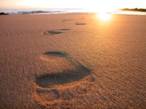 footsteps (1)